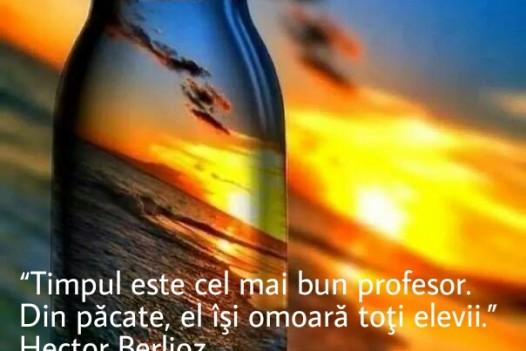 Timpul este cel mai bun profesor .