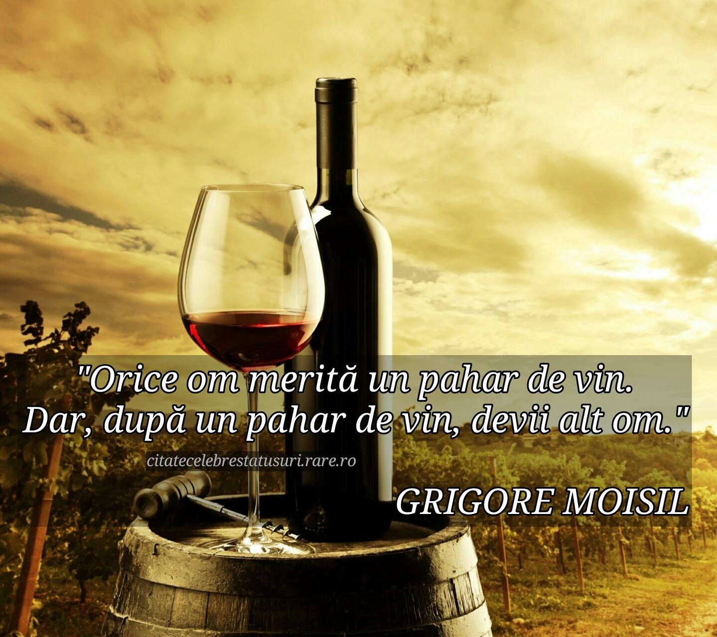 citate celebre despre vin Un pahar de vin   Colectie de citate, statusuri, proverbe, cuvinte  citate celebre despre vin